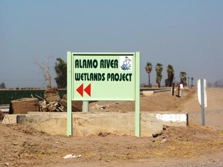 Alamo River Wetlands Project
